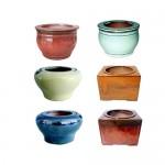 "5"" Self-watering Pot Assortment. 18 pieces"