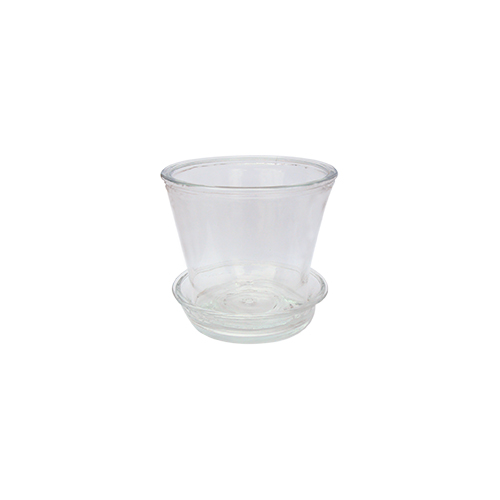 225 & 6\u201c Clear Glass Flower Pot with saucer